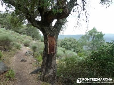 Parque Nacional Monfragüe - Reserva Natural Garganta de los Infiernos-Jerte;senderismo entre semana
